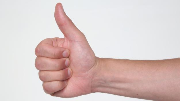 I LIKE: Einstellungskonformität bei der Nachrichtenauswahl?